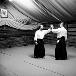Aikido_biancaottphotoart-21