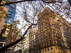 Studienreise New York_BO_ohne WZ-57