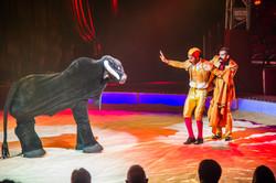 Première_Circus_Nock-128