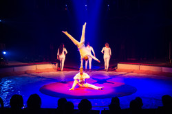 Première_Circus_Nock-167