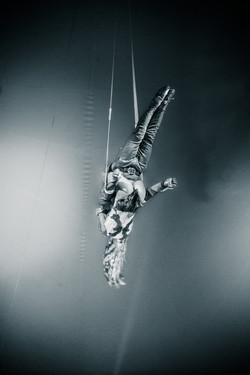 Première_Circus_Nock-96