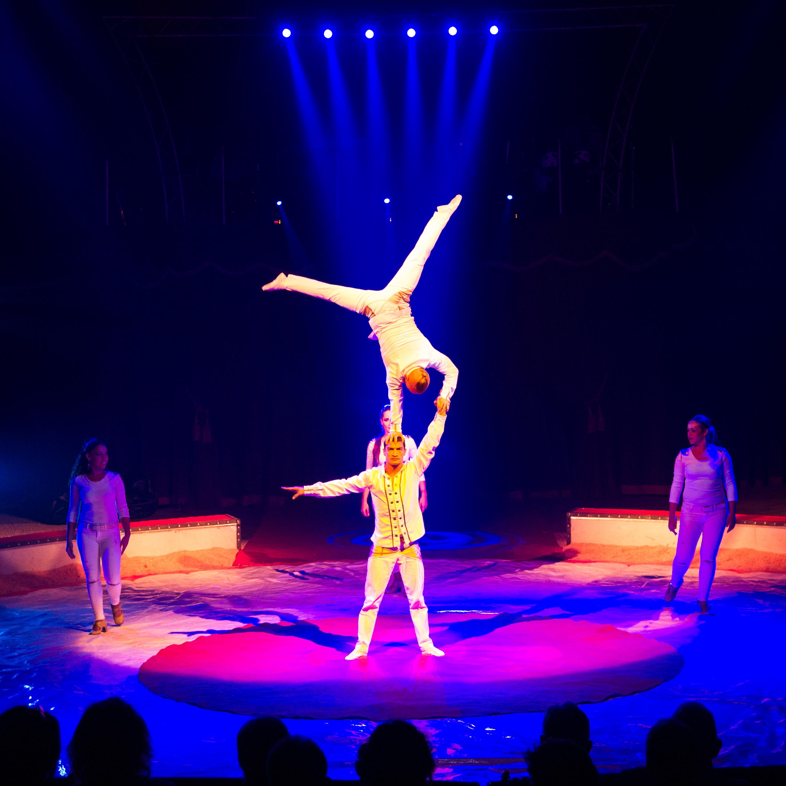 Première_Circus_Nock-165