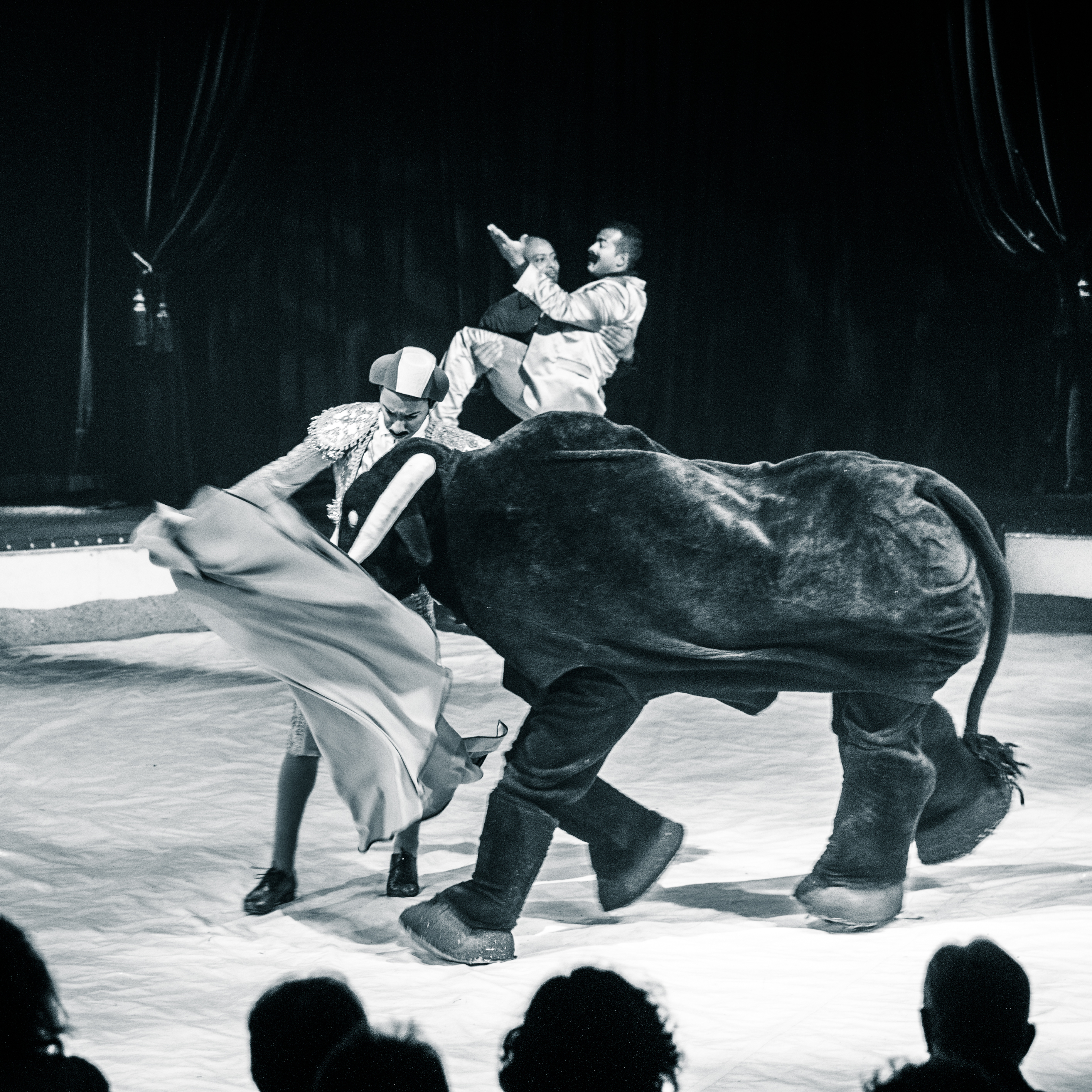Première_Circus_Nock-129