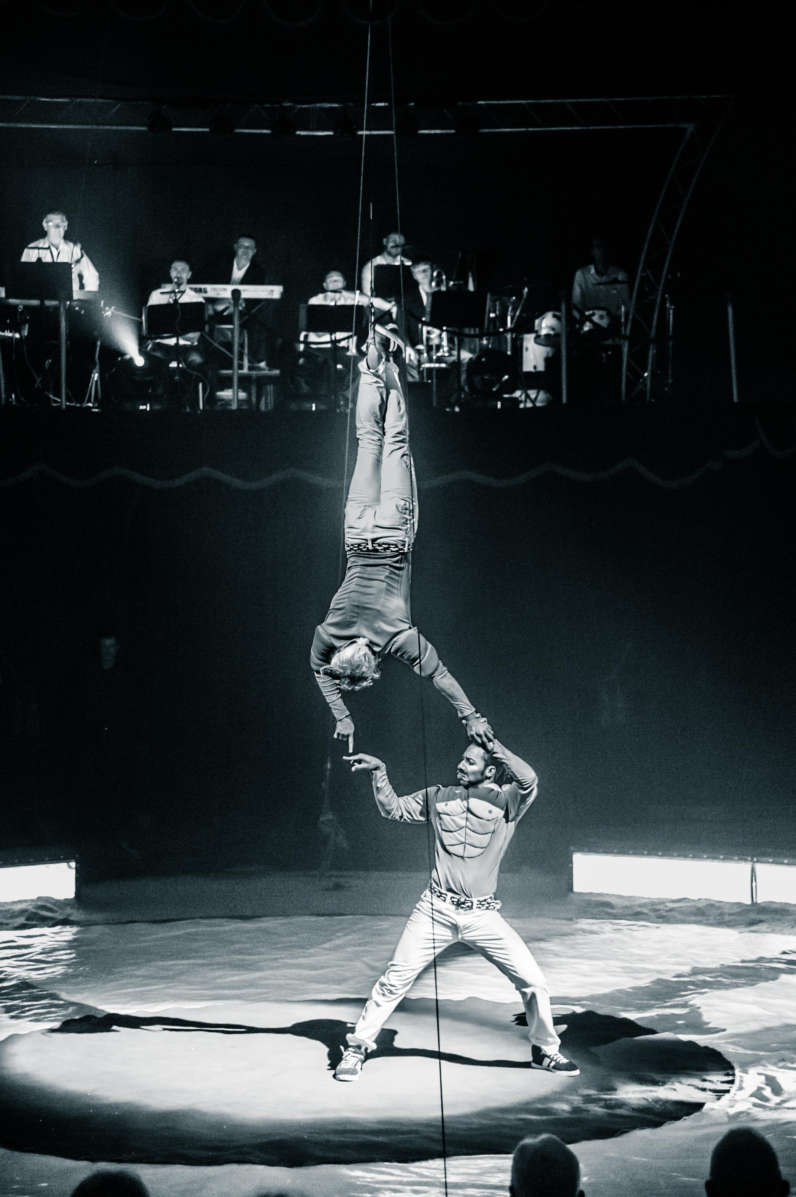 Première_Circus_Nock-201