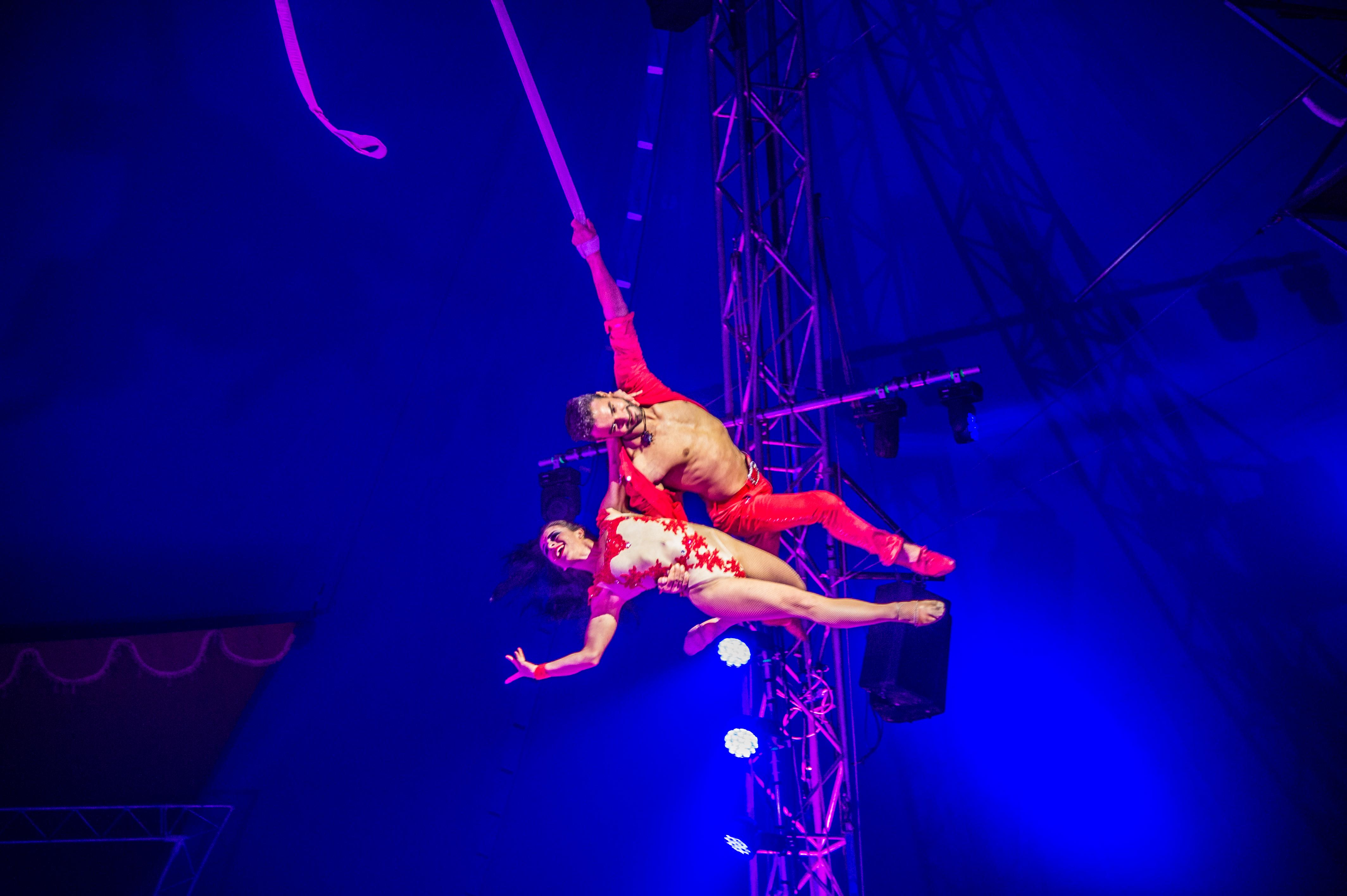 Première_Circus_Nock-84