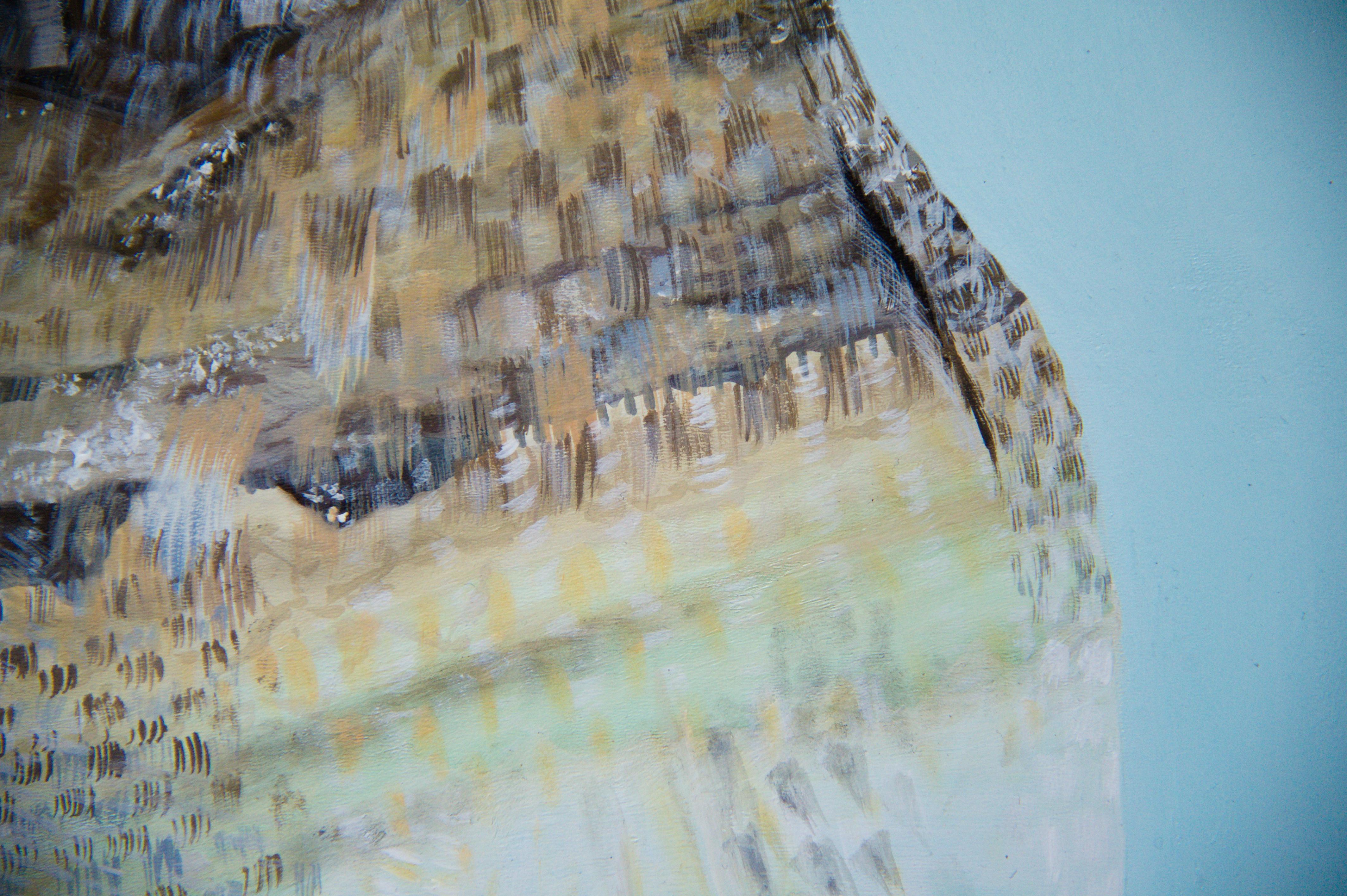 Animalia 2 Detail