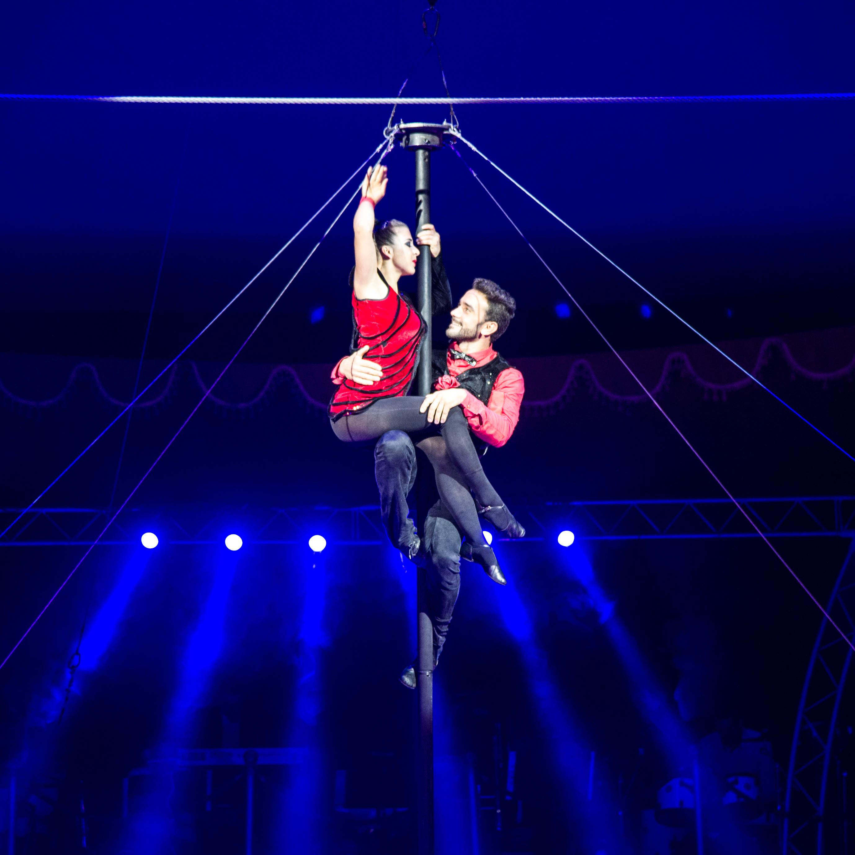 Première_Circus_Nock-120