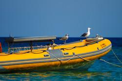 Fahrzeug_Gummboot_gelb