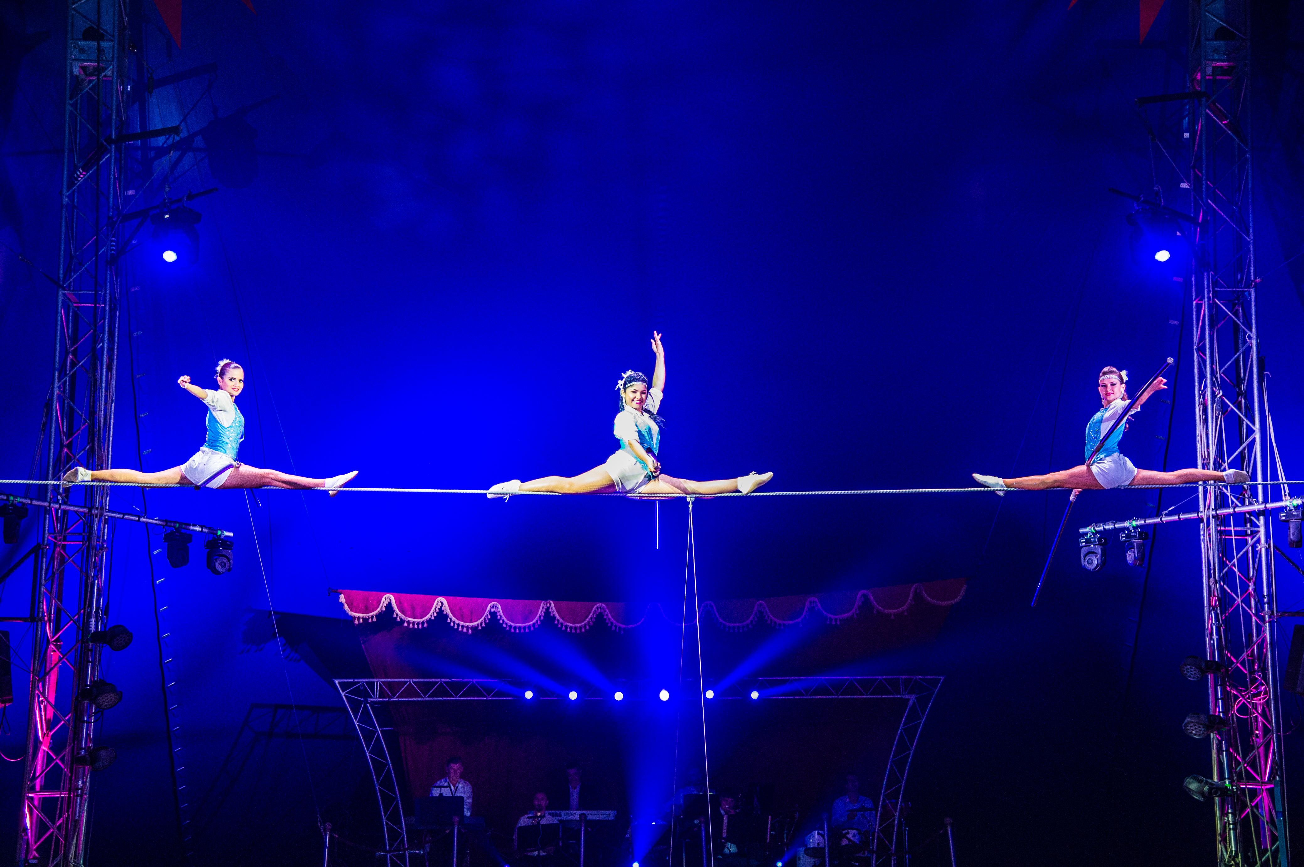 Première_Circus_Nock-205