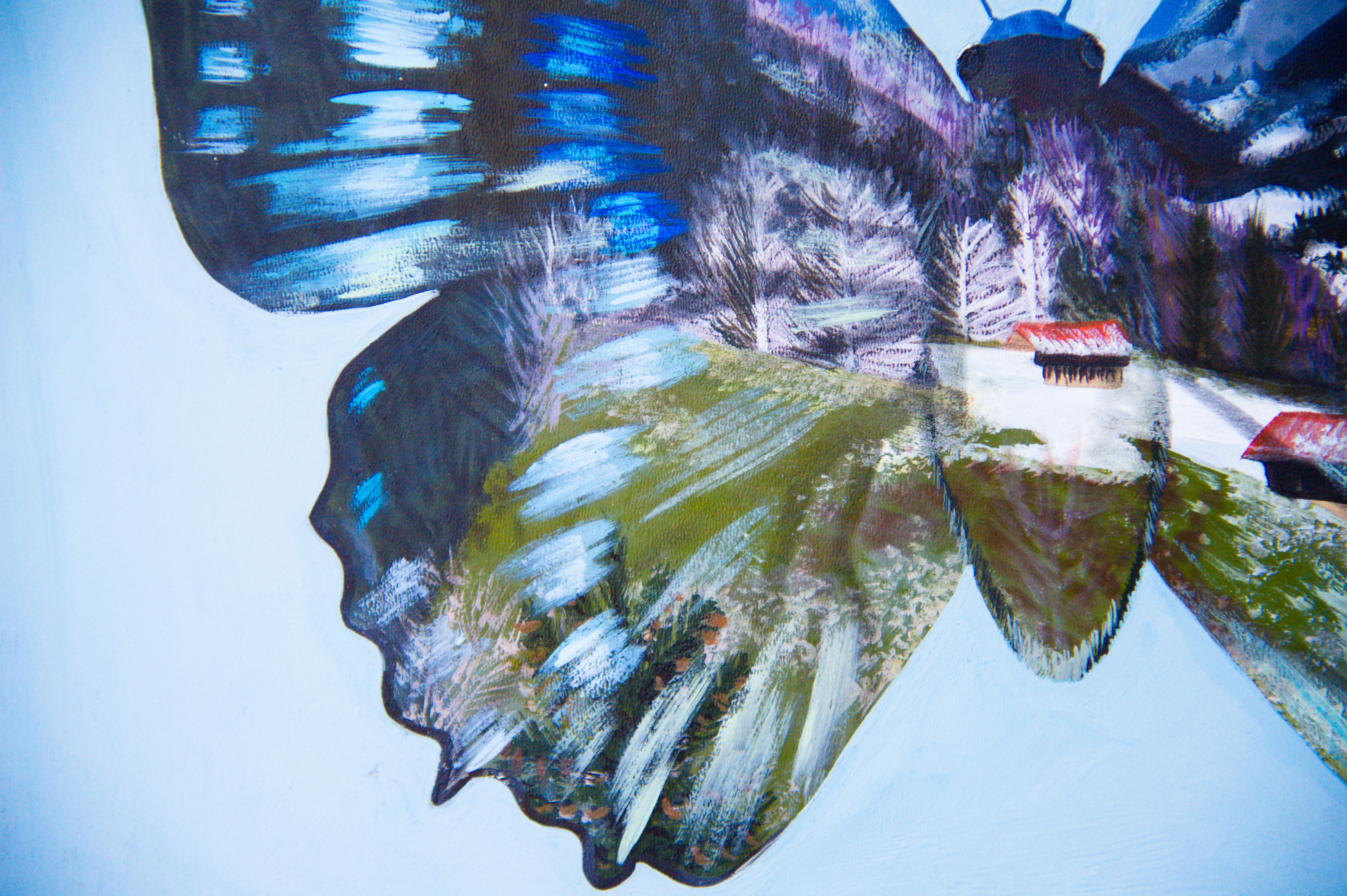 Animalia 4 Detail