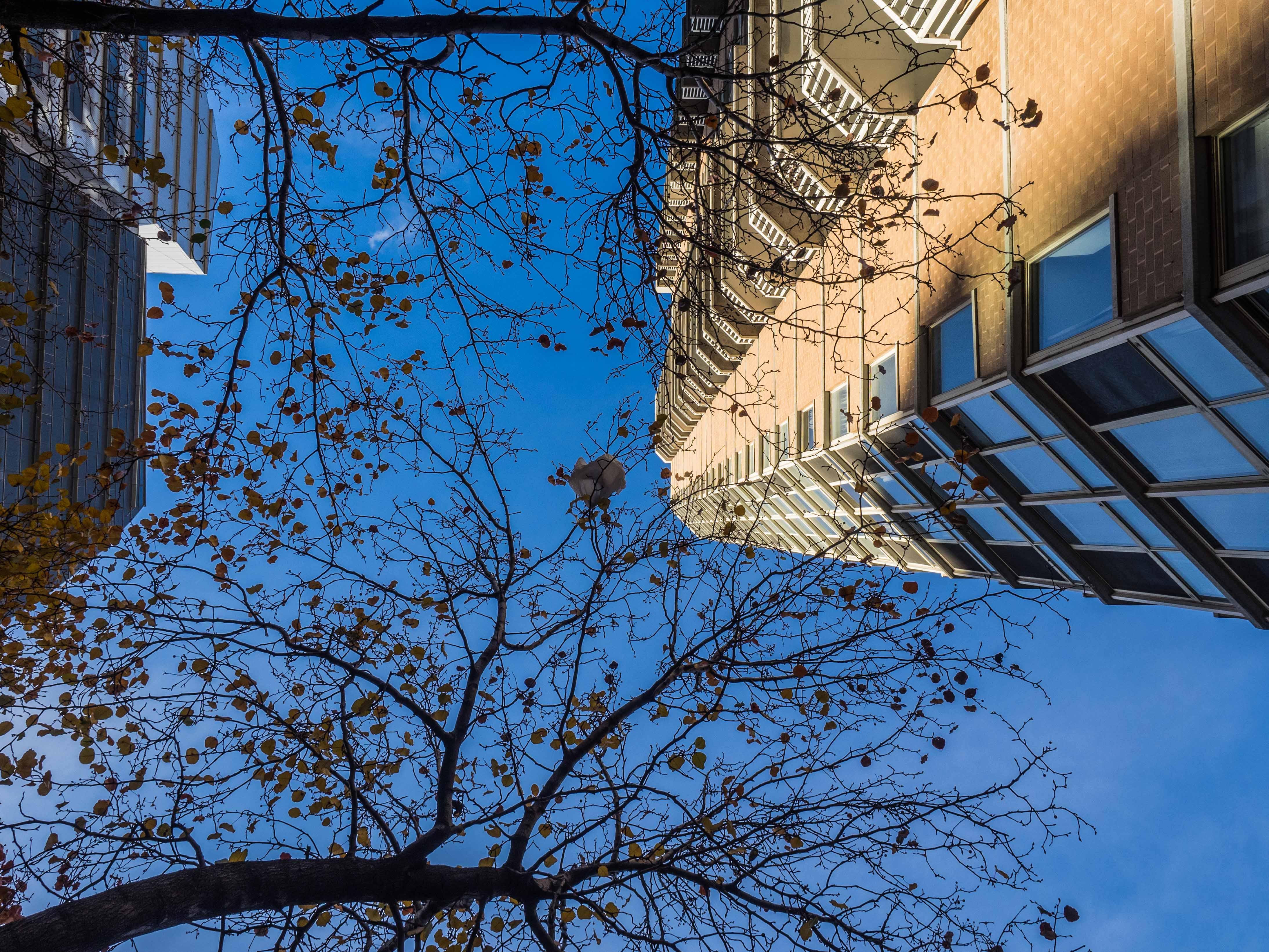 Studienreise New York_BO_ohne WZ-61