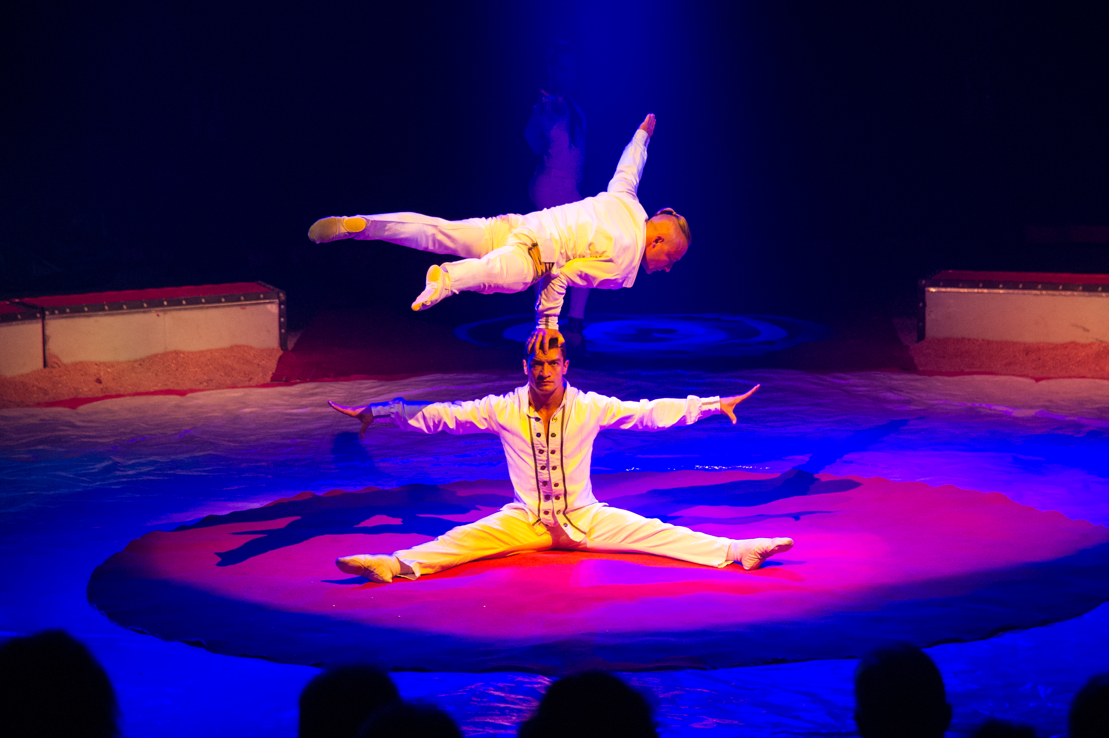 Première_Circus_Nock-169