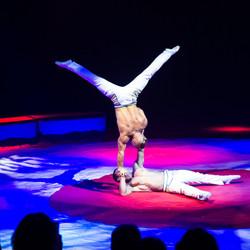 Première_Circus_Nock-192