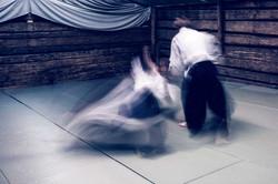 Aikido_biancaottphotoart-47