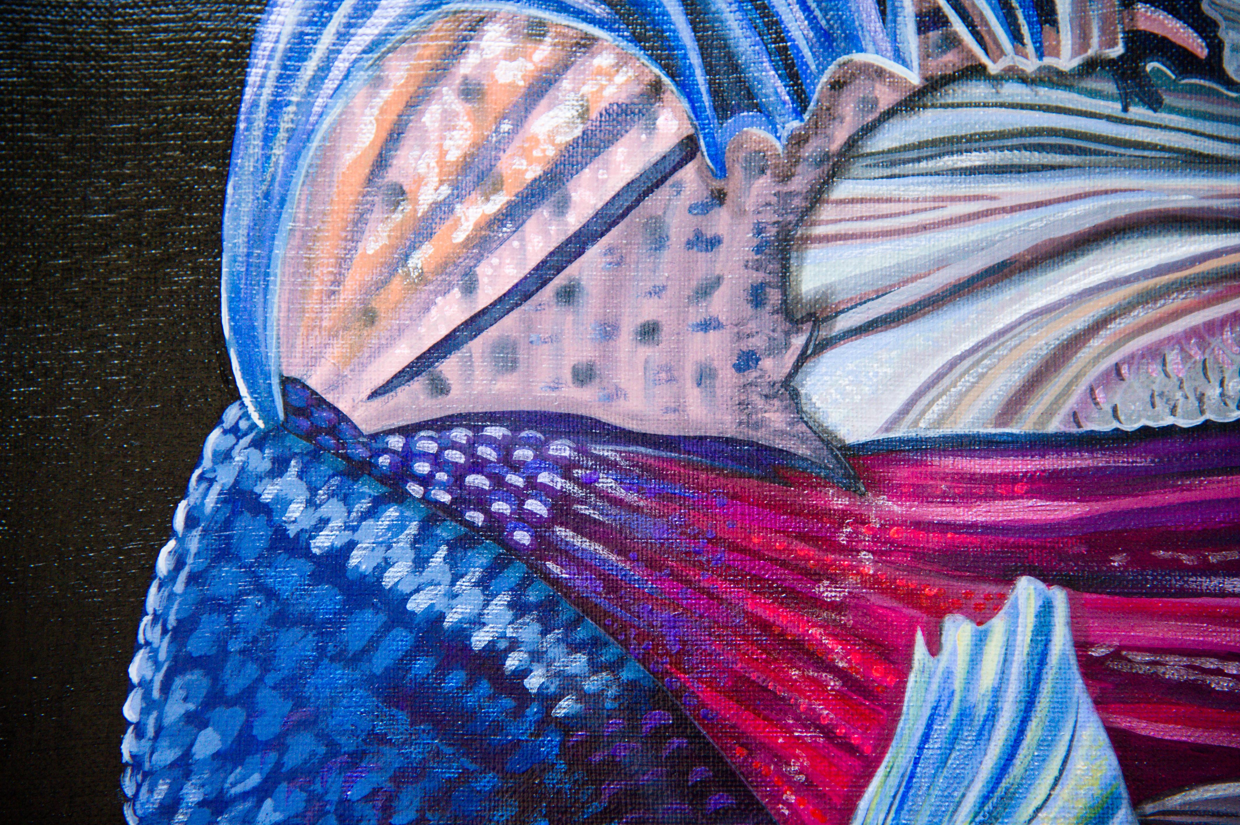 Kampffische Detail 3