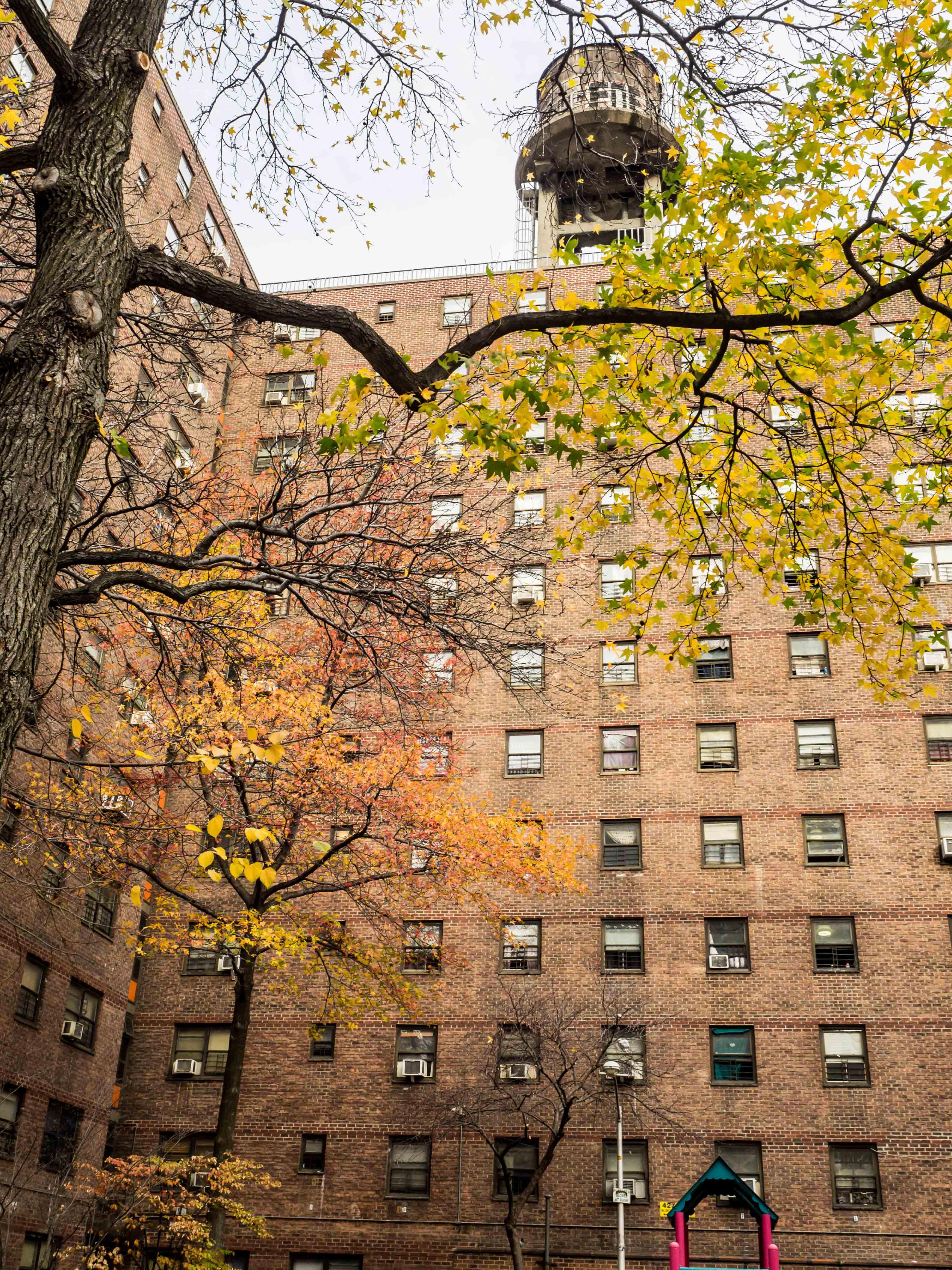 Studienreise New York_BO_ohne WZ-559