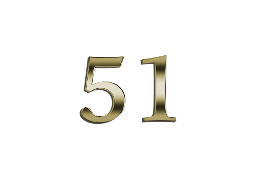 51.0.jpg
