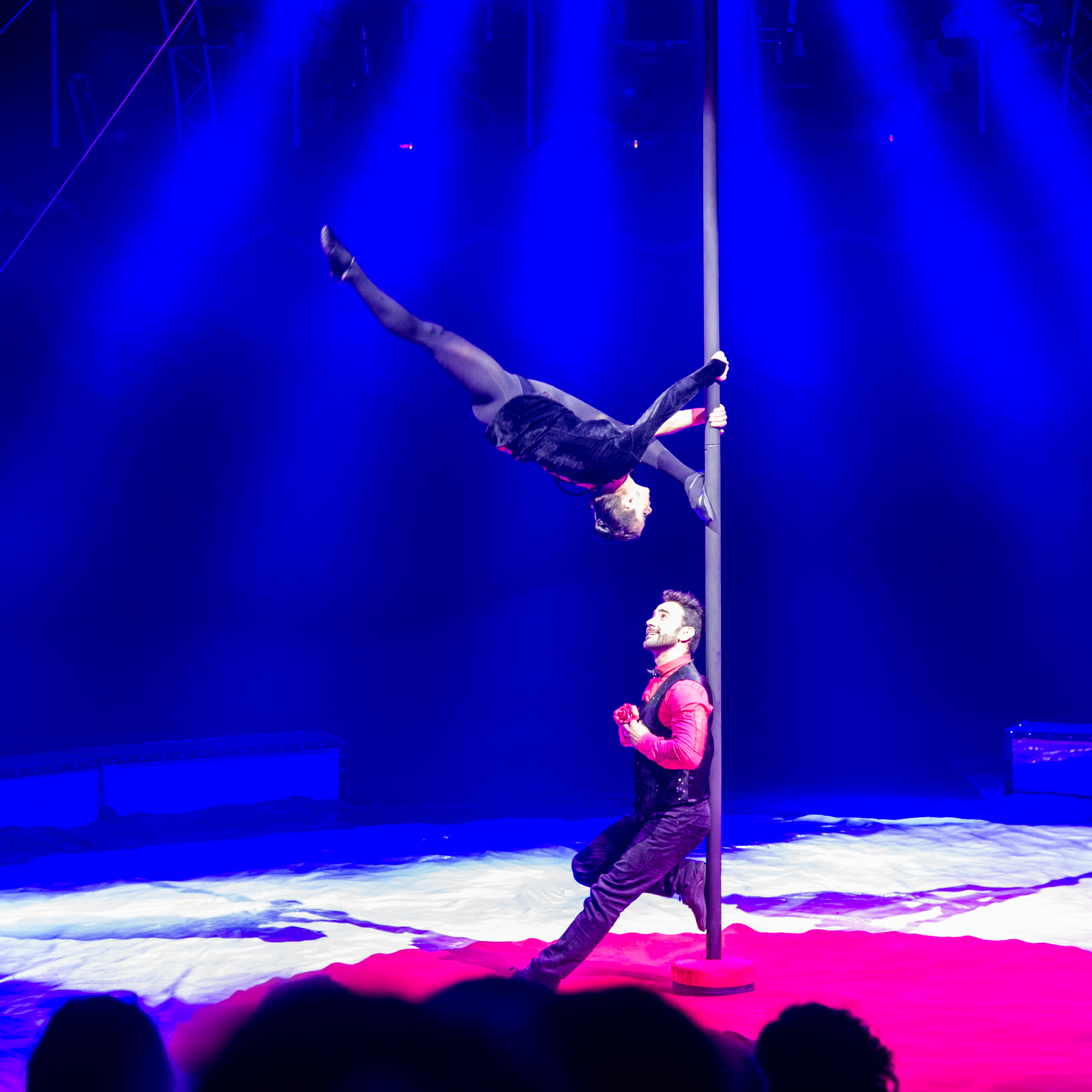 Première_Circus_Nock-124