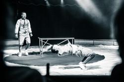 Première_Circus_Nock-68