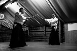 Aikido_biancaottphotoart-18