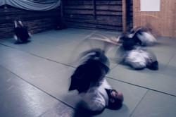 Aikido_biancaottphotoart-40