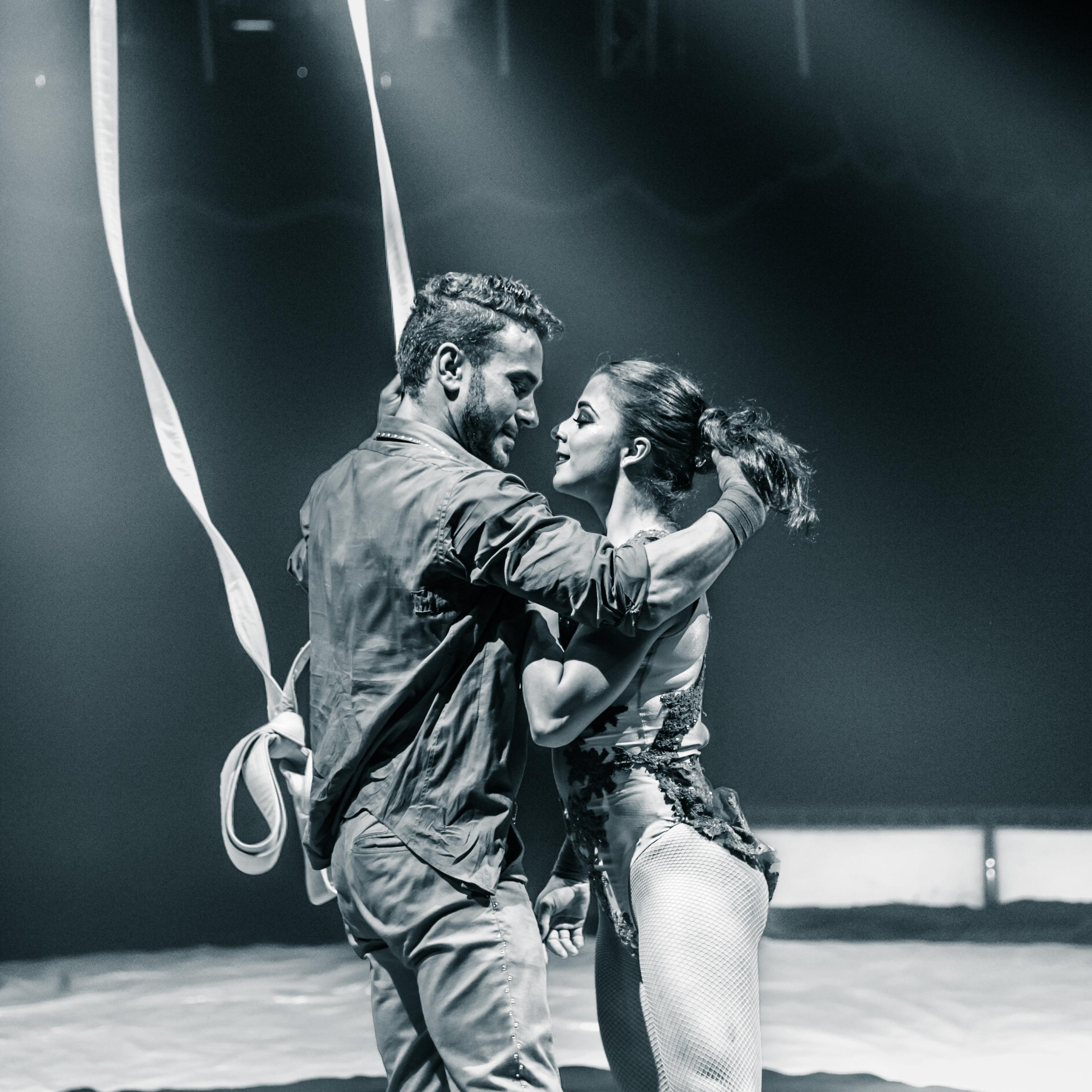 Première_Circus_Nock-79