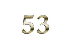53.0.jpg