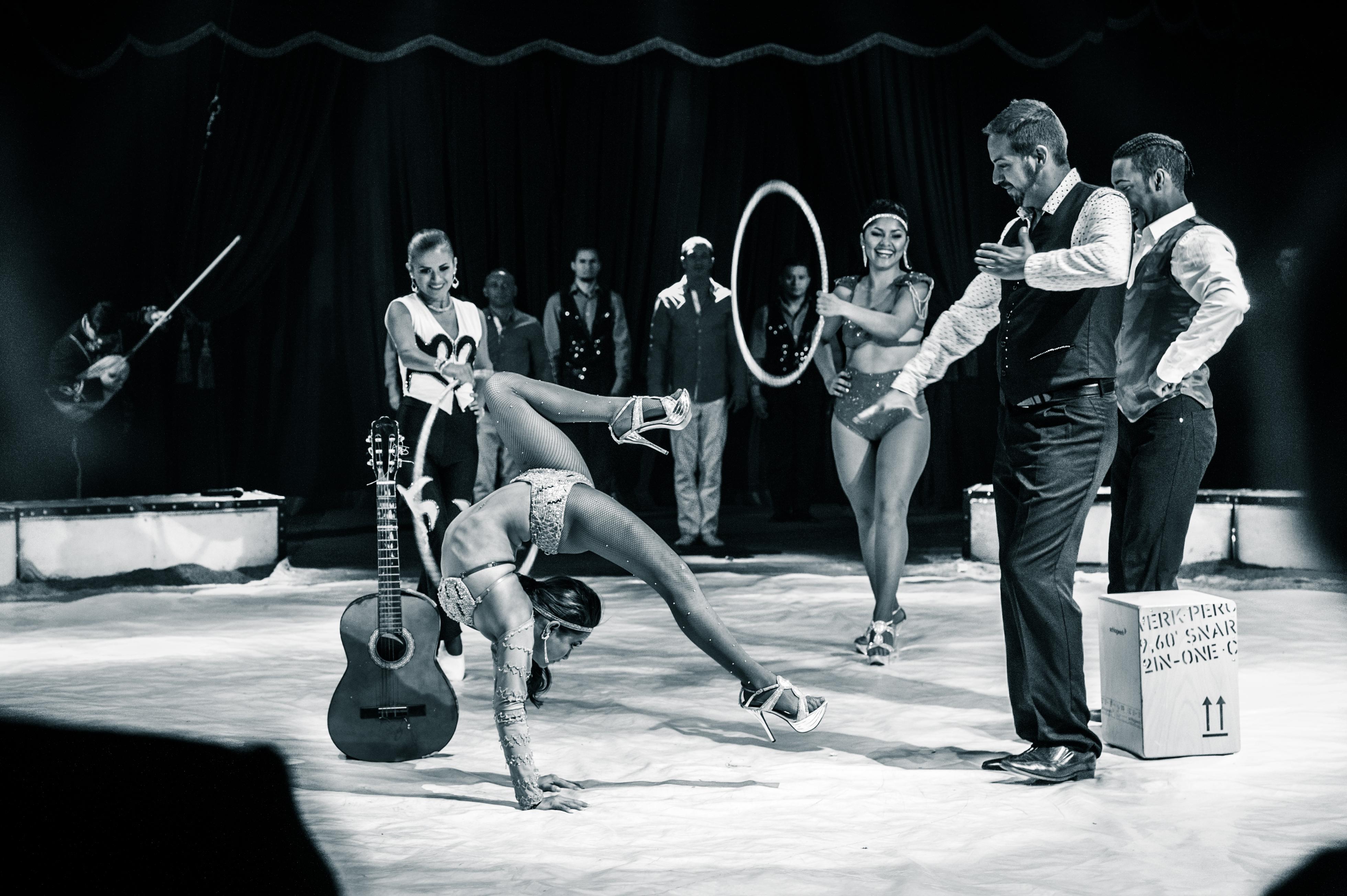 Première_Circus_Nock-7