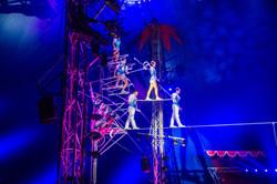 Première_Circus_Nock-221