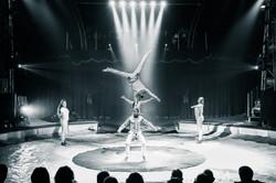 Première_Circus_Nock-166