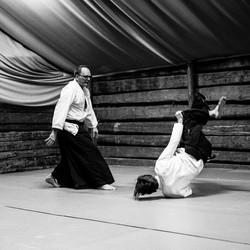 Aikido_biancaottphotoart-24
