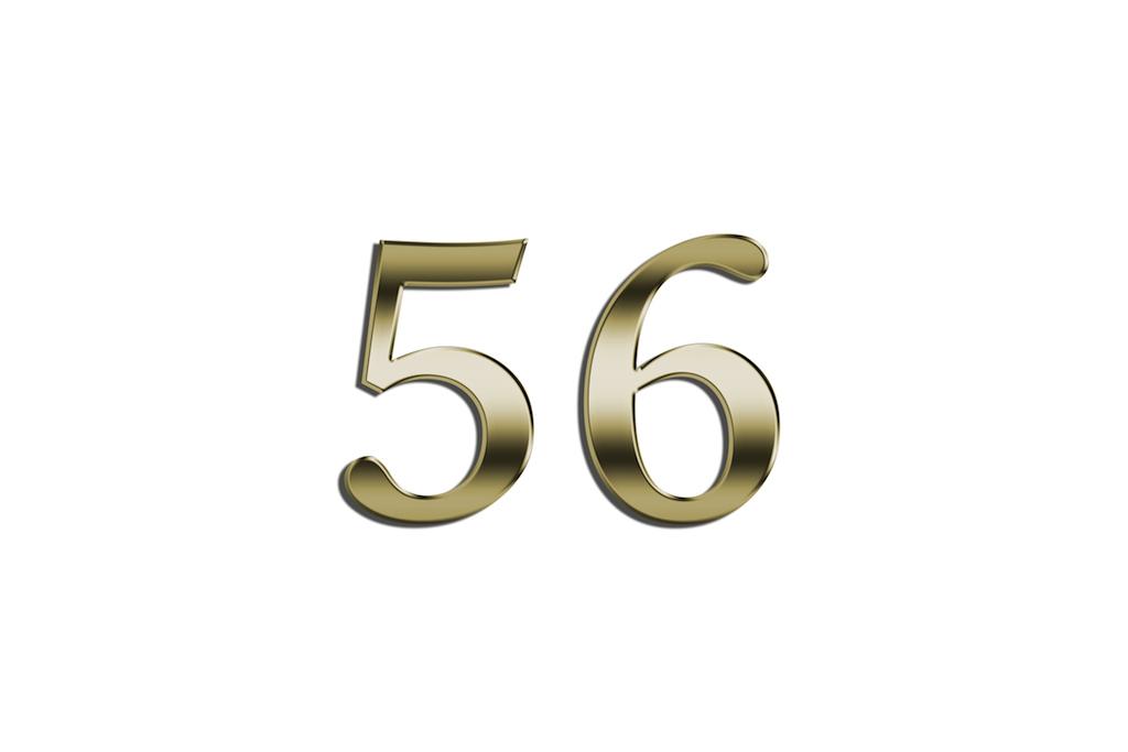 56.0.jpg