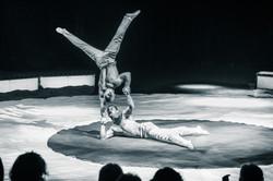 Première_Circus_Nock-189