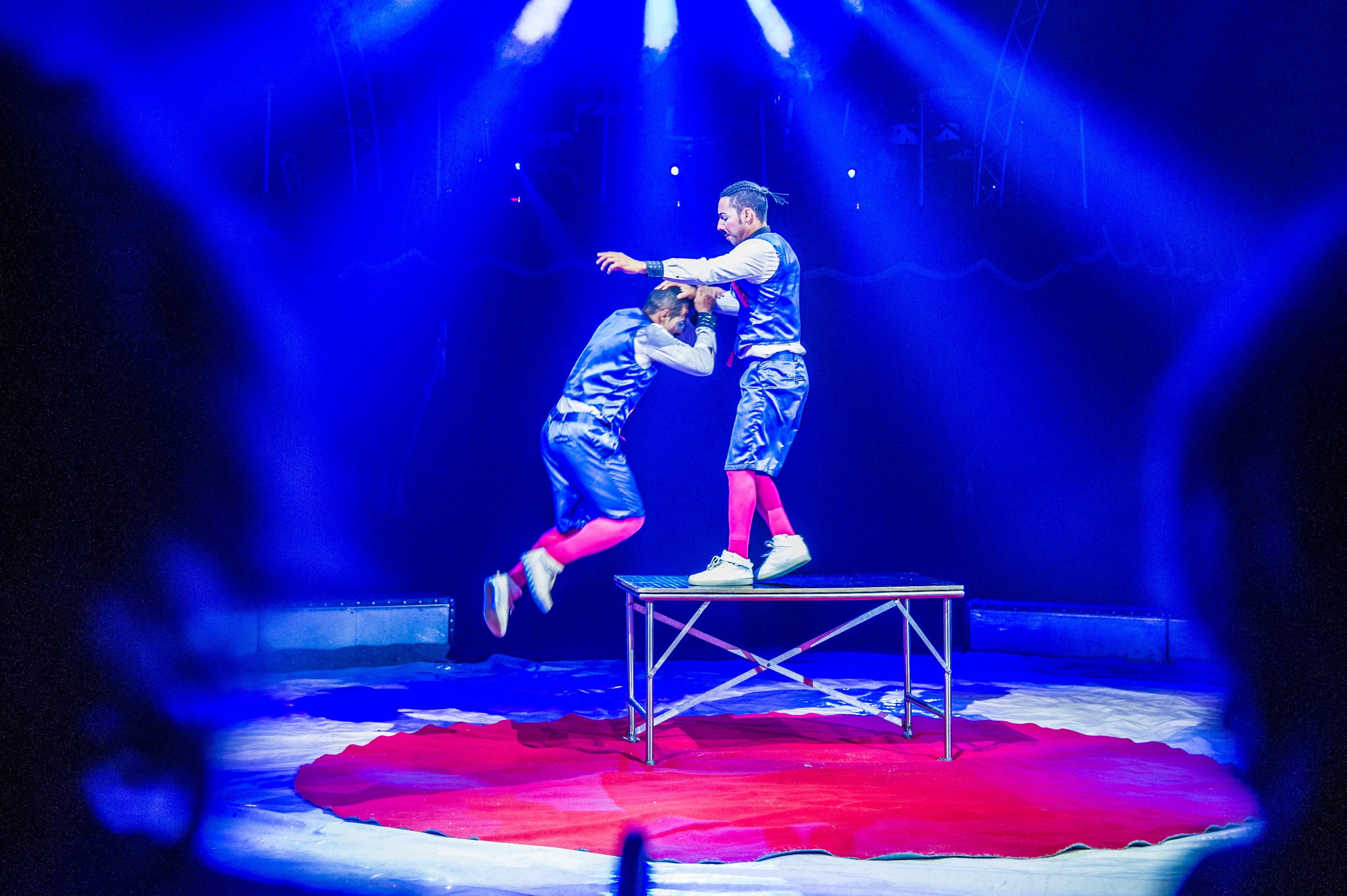 Première_Circus_Nock-65