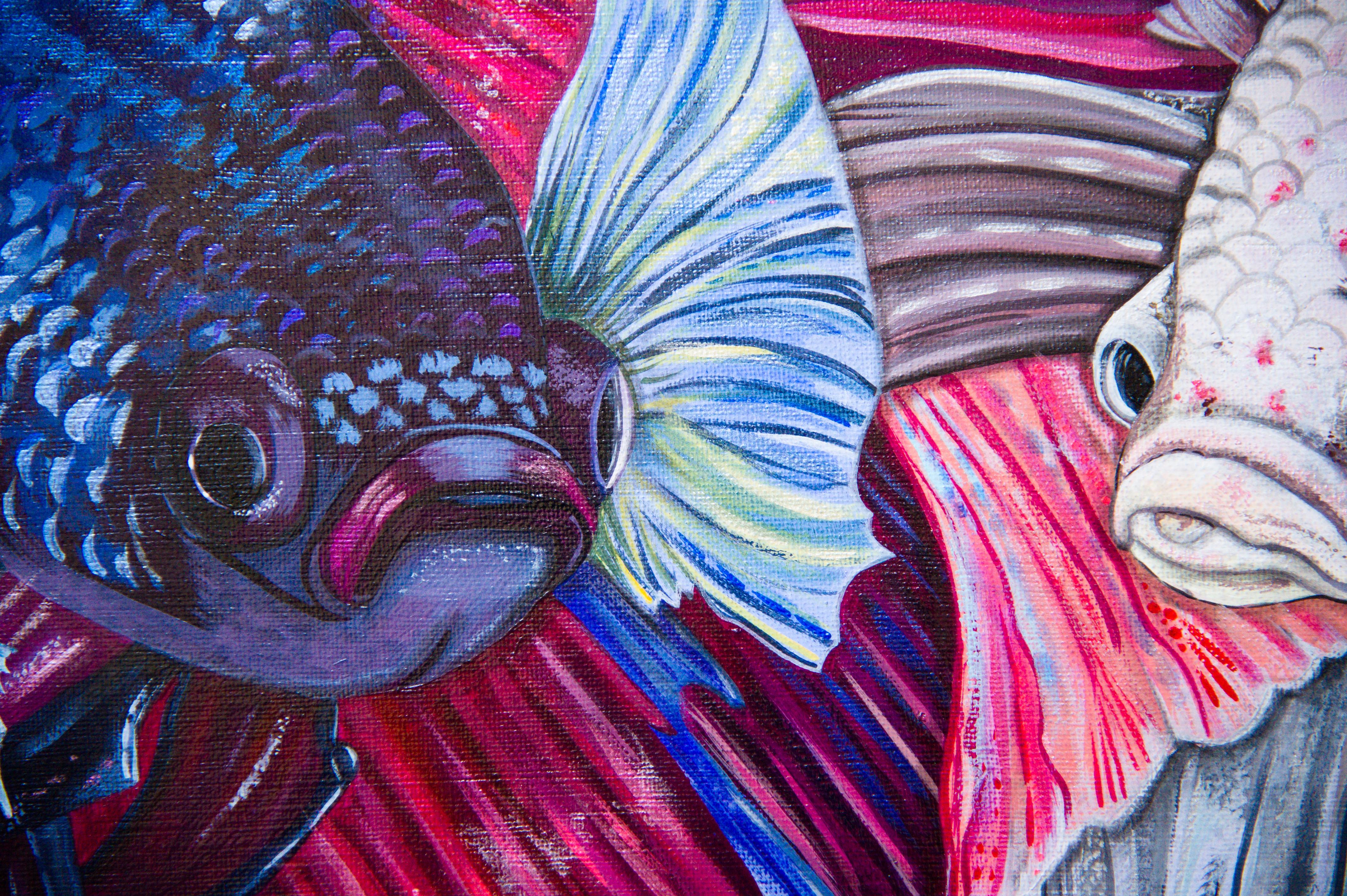 Kampffische Detail 1