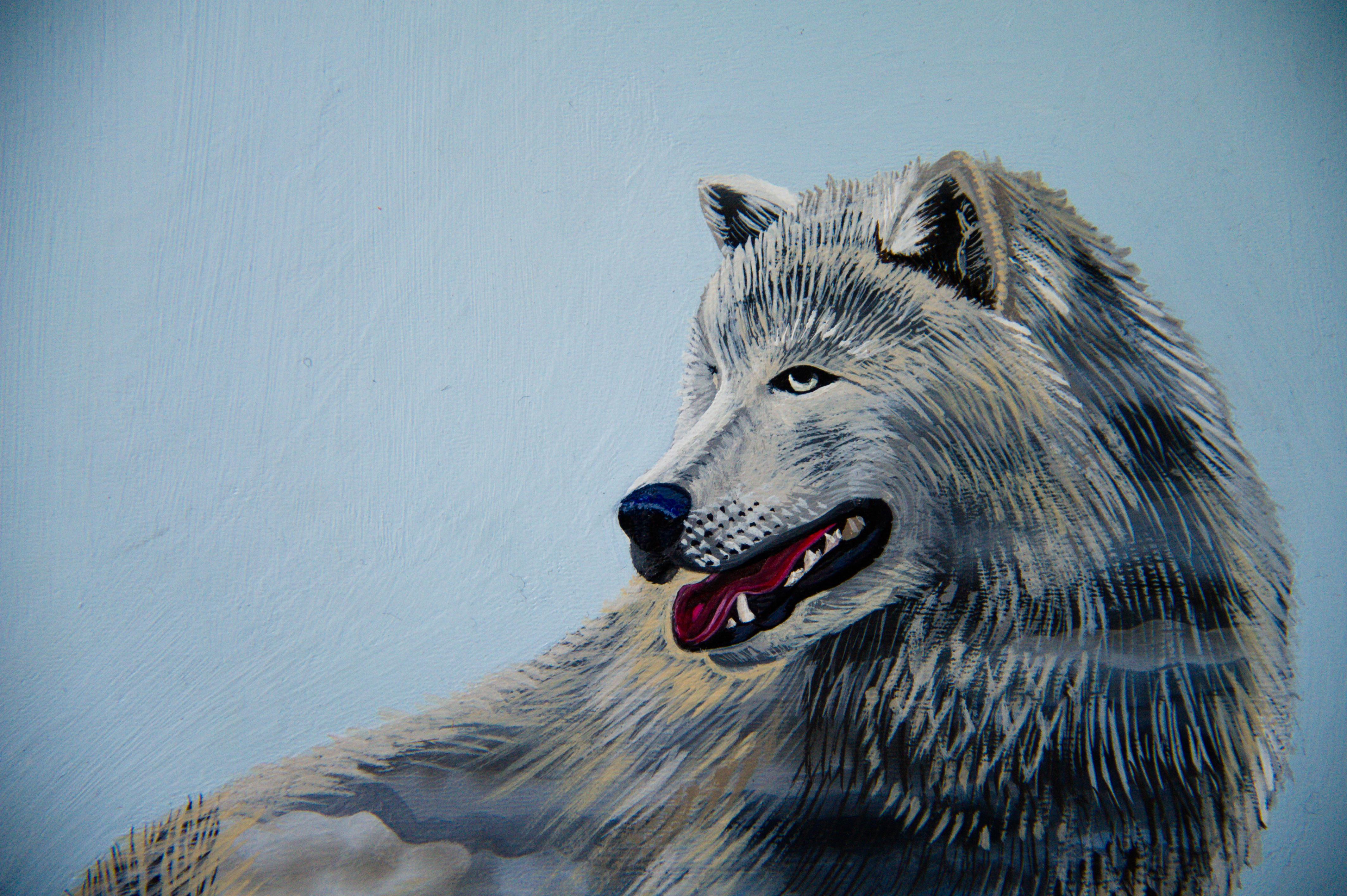 Animalia 1 Detail