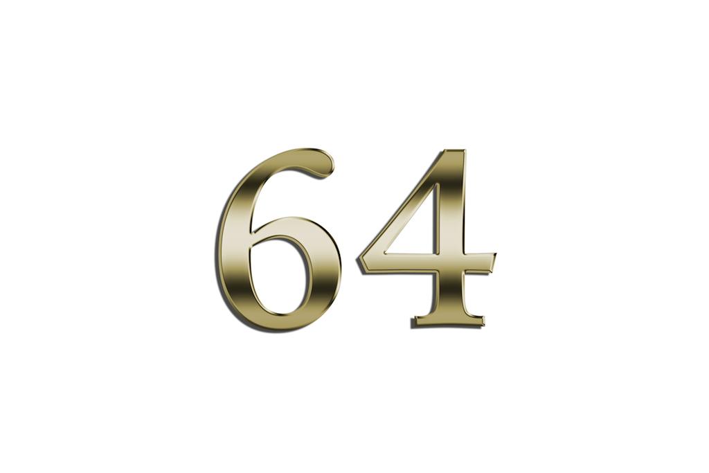 64.0.jpg
