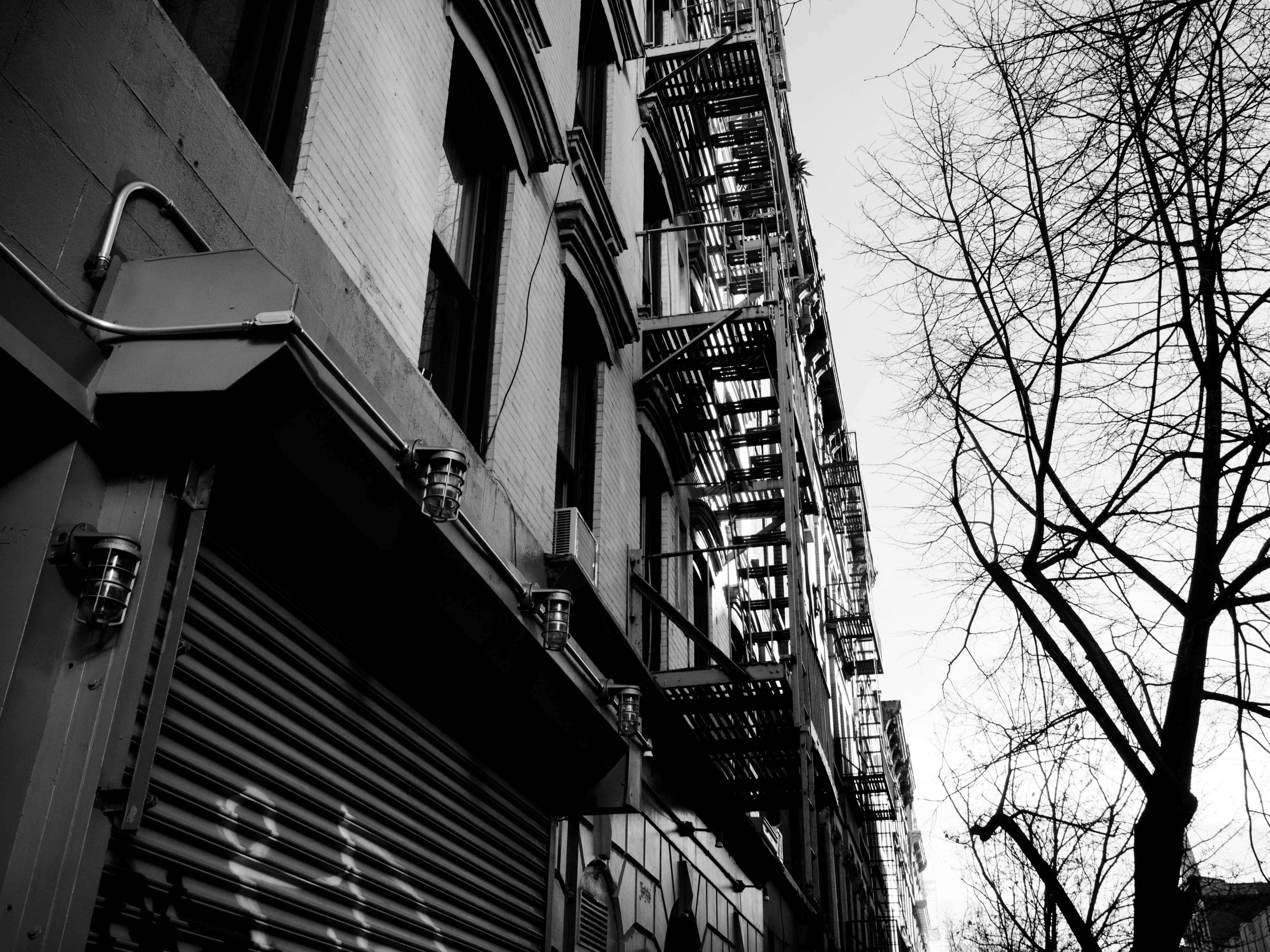 Studienreise New York_BO_ohne WZ-100