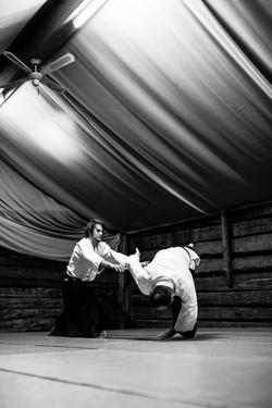 Aikido_biancaottphotoart-27