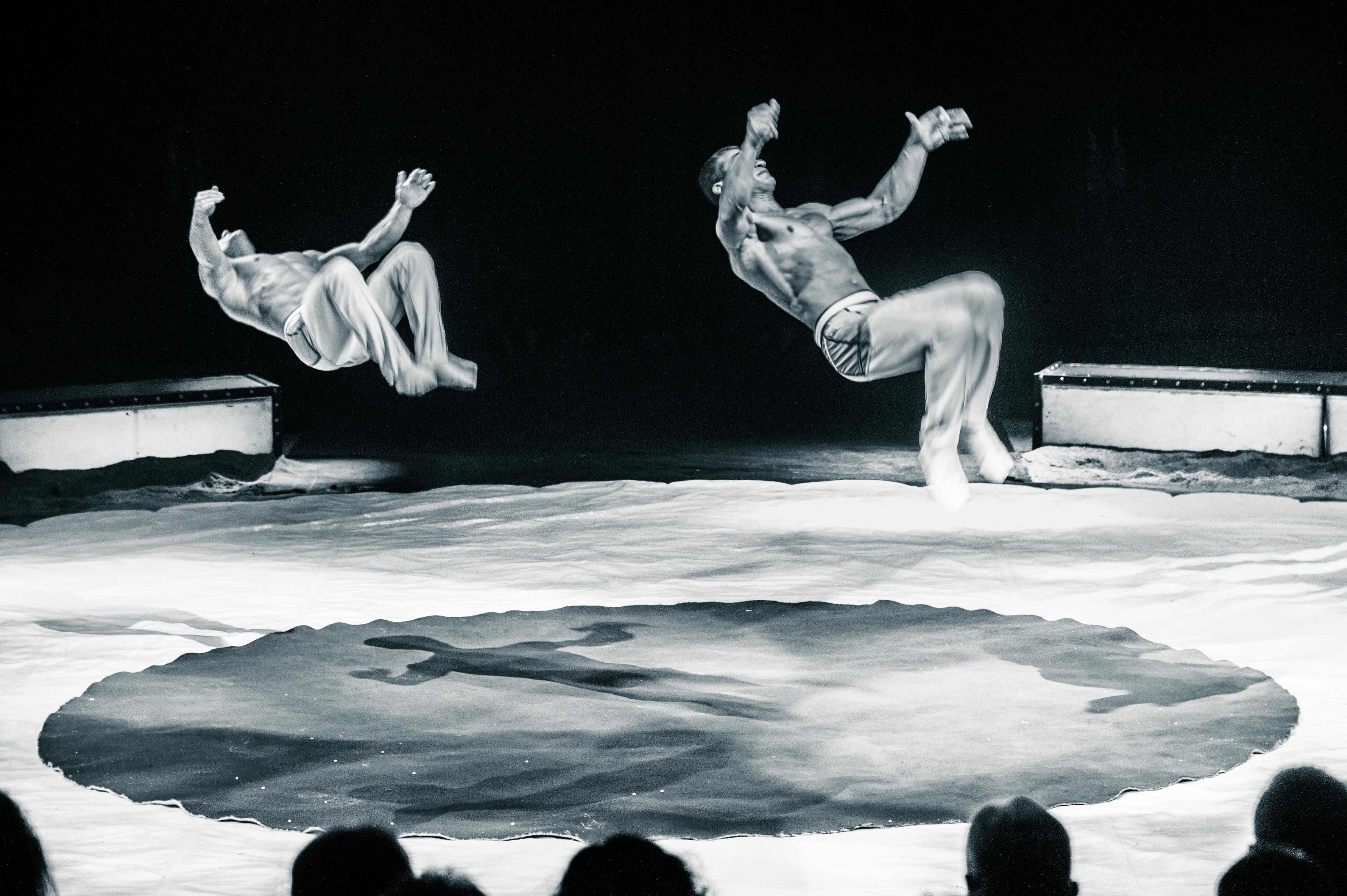 Première_Circus_Nock-184