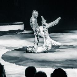 Première_Circus_Nock-193