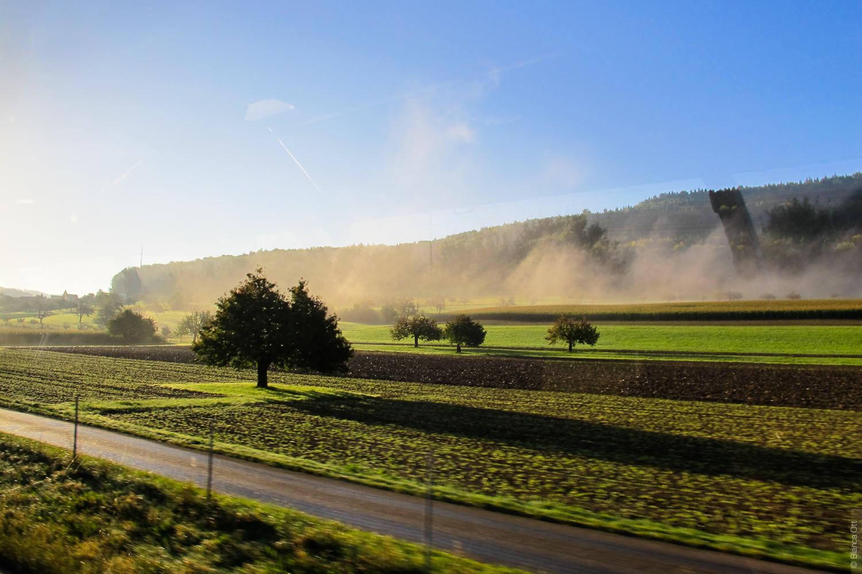 Landschaft_Felder und Nebel