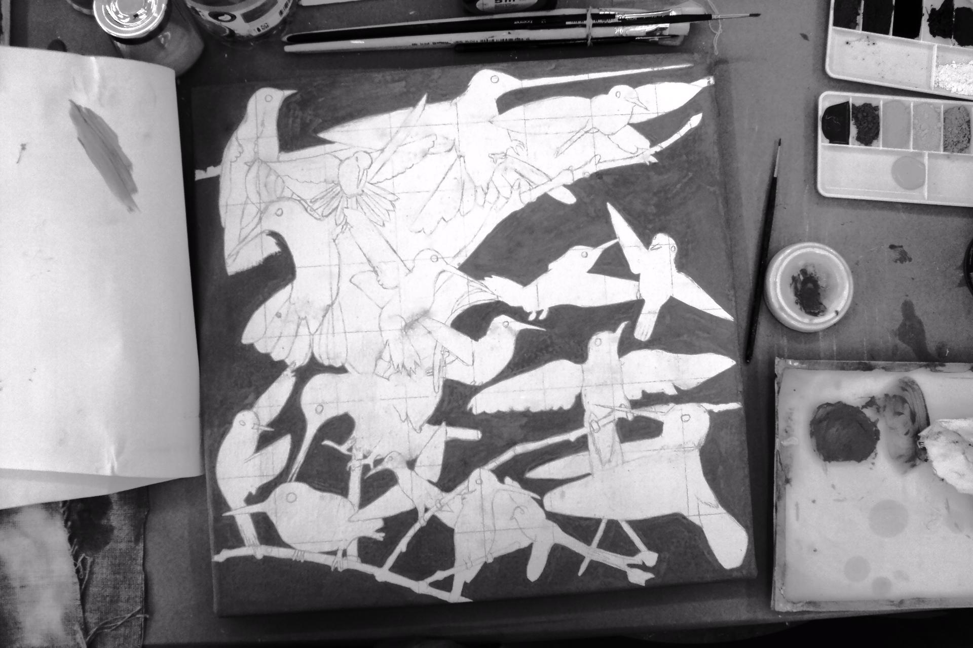 Kolibris Entstehung
