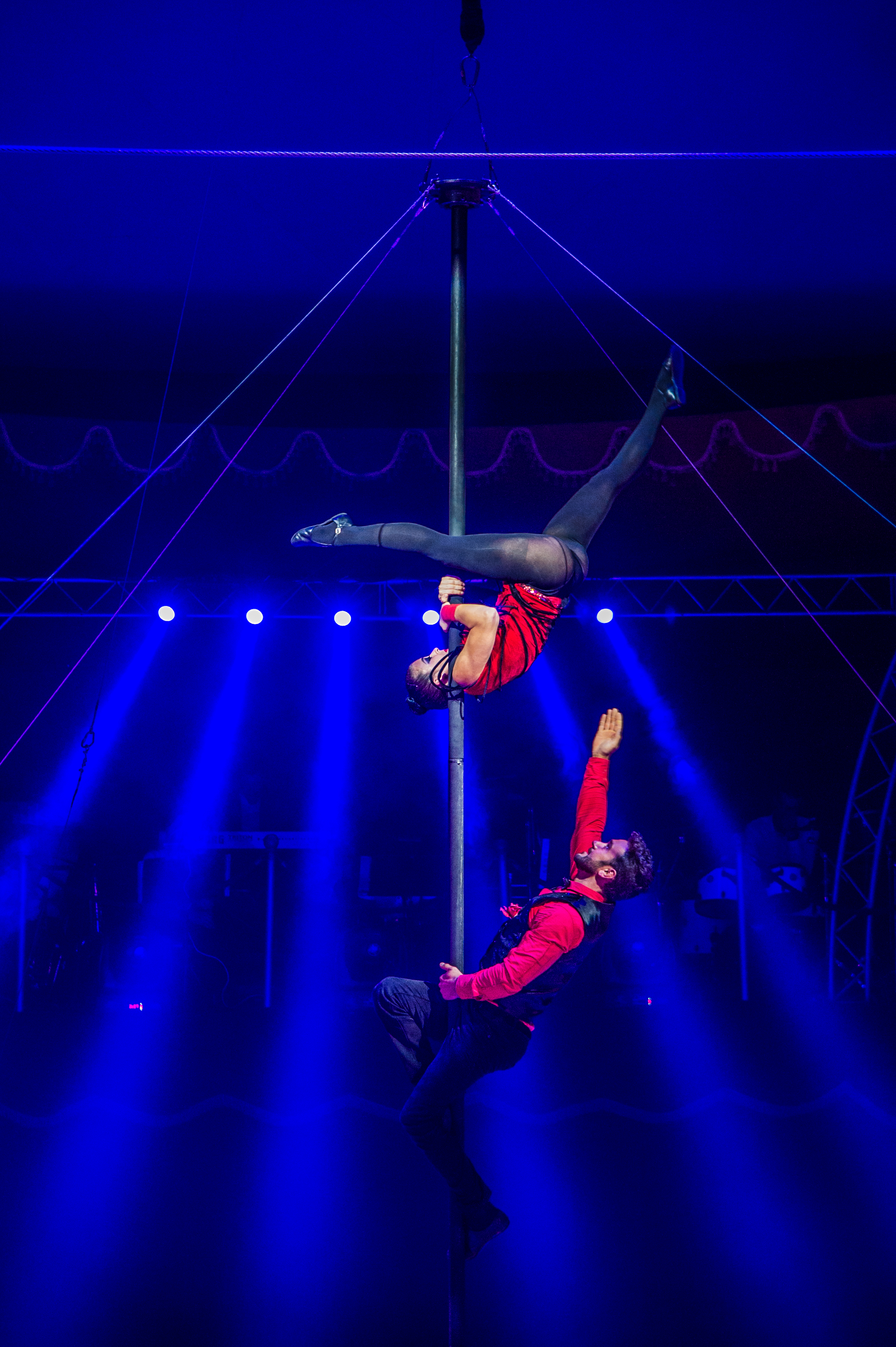 Première_Circus_Nock-117