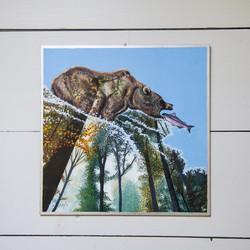 Animalia 3