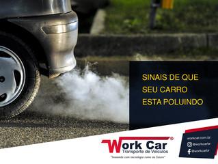 Sinais de que seu carro está poluindo.