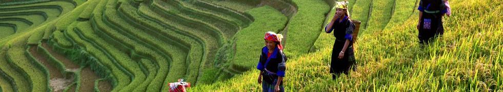 vietnam_header-1.jpg