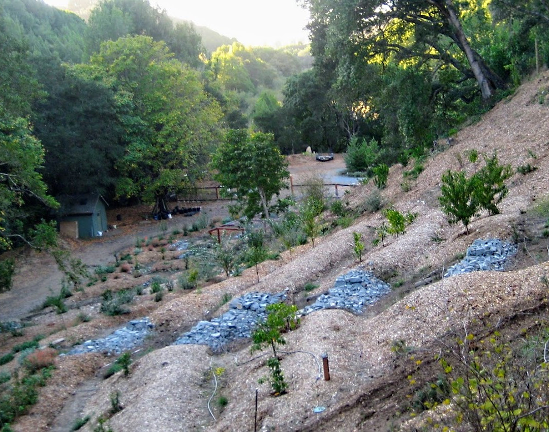 Hillside Orchard as Erosion Mitigation Tool