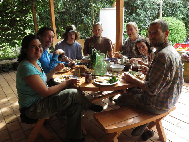 Permaculture Forestry Course