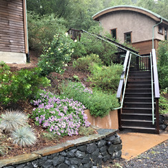 OAEC Guest Housing flowering.JPG